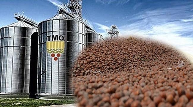 TMO Genel Müdürlüğünden Fındık Açıklaması! - Tarım ve hayvancılık ...